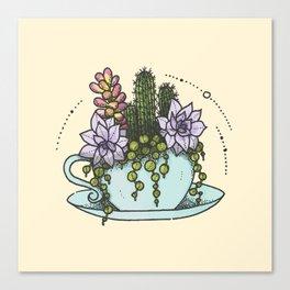 Tea Succs Canvas Print