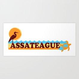 Assateague Island - Maryland. Art Print
