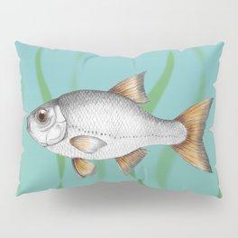 Common roach fish Pillow Sham