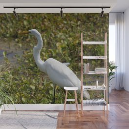 Great Egret on the Prowl Wall Mural