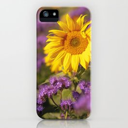Sunflowers splendor in the fall iPhone Case