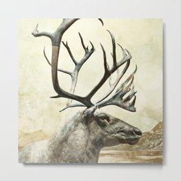 Hi, I am reindeer Metal Print