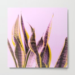 Long Leaves Plant On Pink Background #decor #society6 #buyart Metal Print