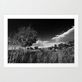 Dark Farms Art Print
