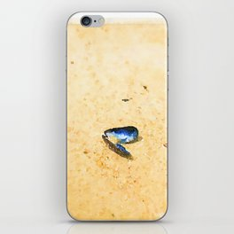 Solitary Mussel shell on the beach iPhone Skin