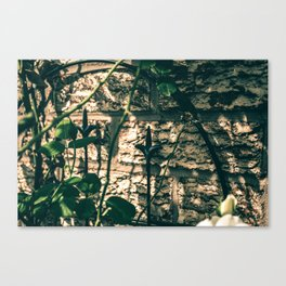 Gloomy afternoon in the garden Canvas Print