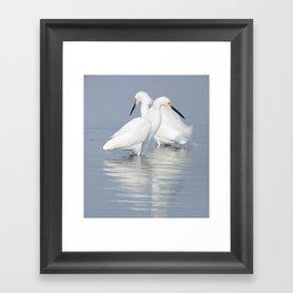 Snowy Reflections  Framed Art Print