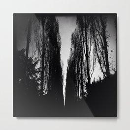Poplars Silhouetted Metal Print