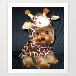 Yorkie   Puppy   Dogs   Sweet Giraffe Costume   Yorkshire Terrier Art Print