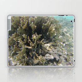 los roques 2 Laptop & iPad Skin