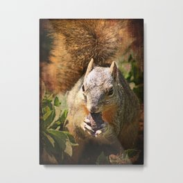 Autumn Squirrel at Lunch Metal Print