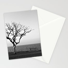 Lonely Tree by Lake Pontchartrain Stationery Cards