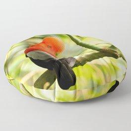 Perching Cock-of-the-Rock Floor Pillow