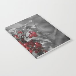 Redcurrant Notebook