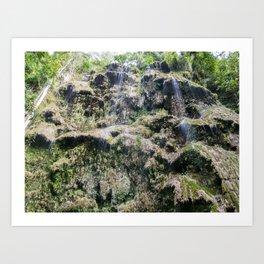 Tumalog Falls, Cebu, Philippines Art Print