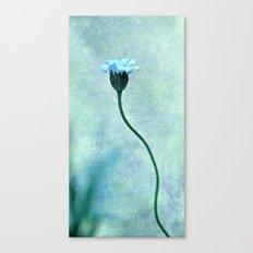 miss bleu Canvas Print