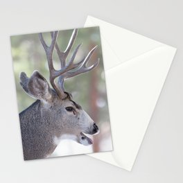 Watercolor Deer, Mule 03, RMNP, That's a Good One Stationery Cards