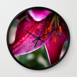A wet Asiatic Lily Wall Clock