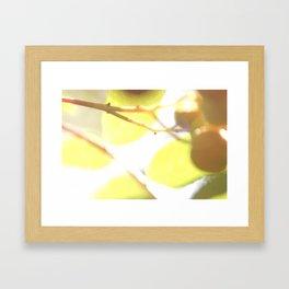 Macro flower 5 Framed Art Print