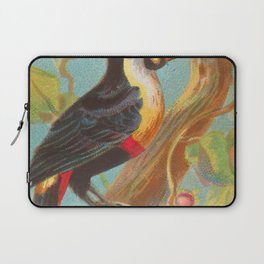 Toco Toucan Birds of the Tropics Series by A&G Laptop Sleeve
