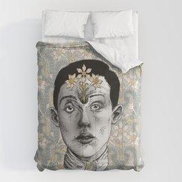Tenderly Renewed Comforters