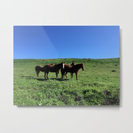 Family is Family Metal Print