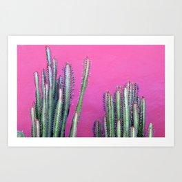 cactus ii. colombia. Art Print