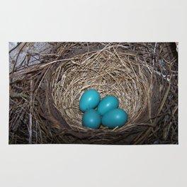 Robin eggs in nest Rug