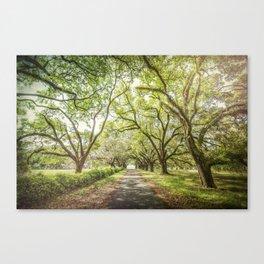 A Walk Through Time Canvas Print
