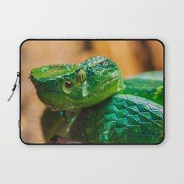 green Palm pit viper Laptop Sleeve