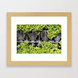 Ironwork in the Hedge Framed Art Print