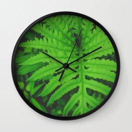 Nearby Jungle Wall Clock