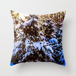 Winter Sunset In A Softwood Forest Throw Pillow