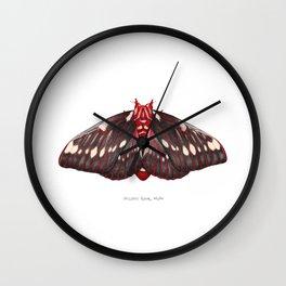 Splendid Royal Moth (Citheronia splendens) Wall Clock