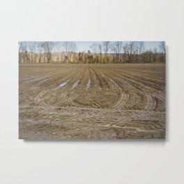 Country living Metal Print
