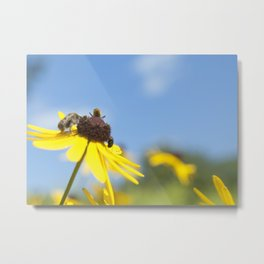 plight of the bees I Metal Print