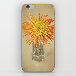 Nature's Firework iPhone Skin