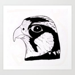 Falcon Face Art Print
