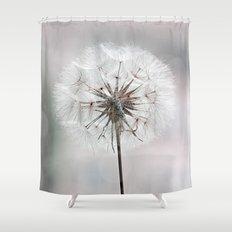 delicate dandelion flower in soft light shower curtain