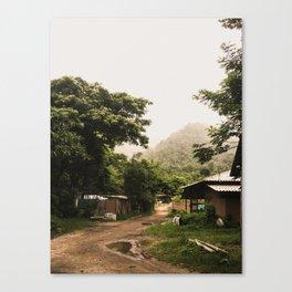elephant nature park 5 Canvas Print