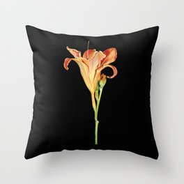 Orange Daylily Illustration Throw Pillow
