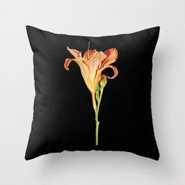 Orange Daylily Illustration Throw Pillow