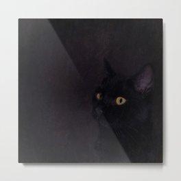 Black Cat - Prince Of Darkness Metal Print