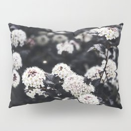 Lifestyle Background 38 Pillow Sham
