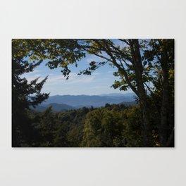 Smokey Mountain Love Canvas Print