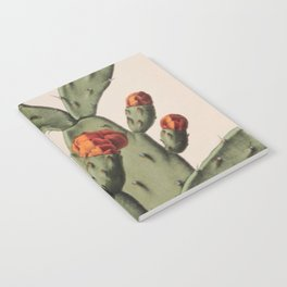Botanical Cactus Notebook