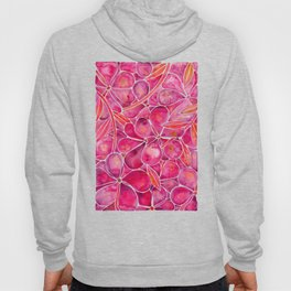 Orchid Wall – Magenta Palette Hoody