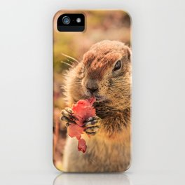 Have a smile for breakfast iPhone Case