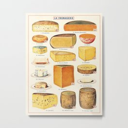 French Cheese Vintage Scientific Illustration Encyclopedia Labeled Diagrams Metal Print