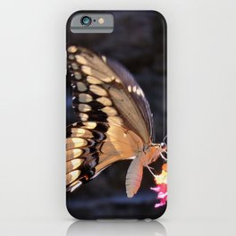 Swallowtail Overexposed iPhone Case